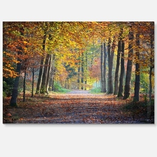 Wide Pathway in Yellow Fall Forest - Landscape Photo Glossy Metal Wall Art