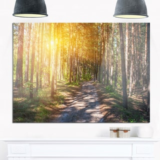 Thick Forest with Yellow Sun Rays - Landscape Photo Glossy Metal Wall Art