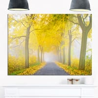 Misty Road in Yellow Autumn Forest - Landscape Photo Glossy Metal Wall Art