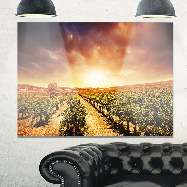 Vineyard with Stormy Sunset - Extra Large Glossy Metal Wall Art ...