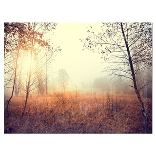 Beautiful Natural Landscape with Trees - Extra Large Glossy Metal Wall Art Landscape