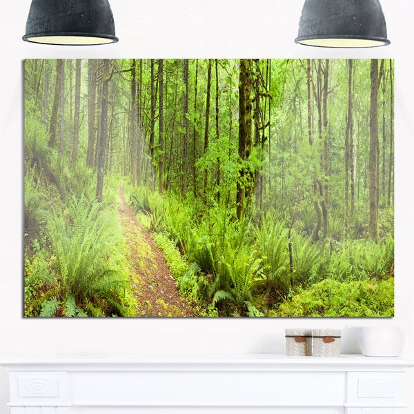 Lush Forest Path Columbia River - Forest Glossy Metal Wall Art -  DESIGN ART