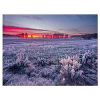 Colorful Cold Frosty Morning - Landscape Glossy Metal Wall Art
