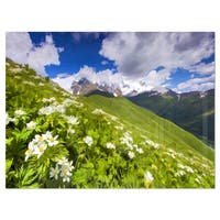 Blossom Flowers in Mountains - Landscape Glossy Metal Wall Art