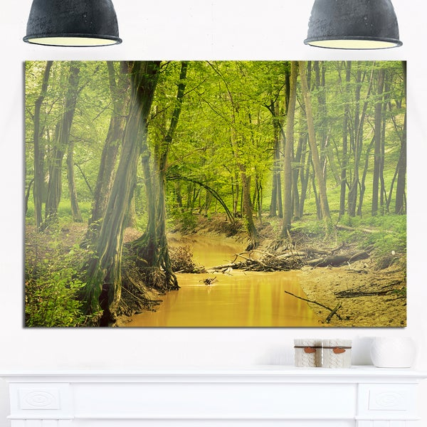 Creek in Wild Green Forest - Oversized Forest Glossy Metal Wall Art ...