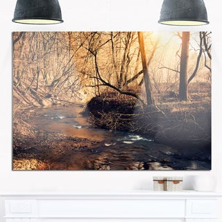 Brown Creek in National Park - Modern Forest Glossy Metal Wall Art