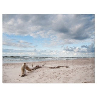 Large Piece of Wood on Beach - Modern Seascape Glossy Metal Wall Art