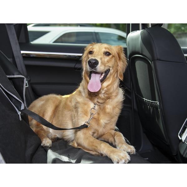 LucyBelle Pets Black Nylon Stainless Steel Pet Car Seat Belt