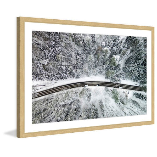 Marmont Hill - 'Icy Firs' by Karolis Janulis Framed Painting Print