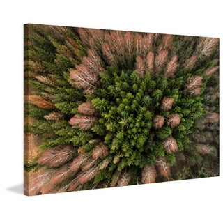 Marmont Hill - 'Feather Trees' by Karolis Janulis Painting Print on Wrapped Canvas