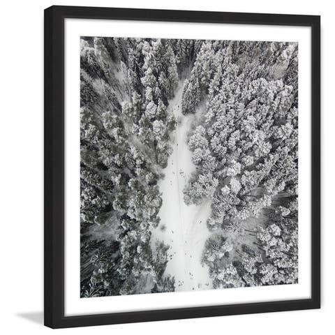 Marmont Hill - Handmade Path Among Giants Framed Print