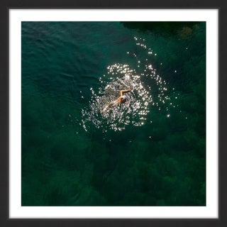 Marmont Hill - 'Breaststroke' by Karolis Janulis Framed Painting Print