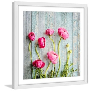 Marmont Hill - 'Pink Ranunculus' by Sylvia Cook Framed Painting Print
