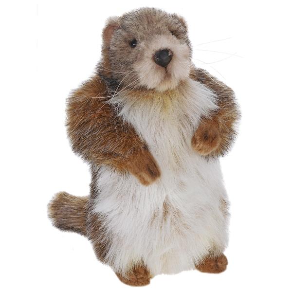 Hansa 9 Inch Baby Marmot (Groundhog)