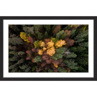 Marmont Hill - 'Luscious Flora' by Karolis Janulis Framed Painting Print
