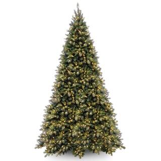 Tiffany Fir Clear-lit Medium 12-foot Tree