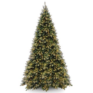 Tiffany Fir Clear-lit Medium 12-foot Tree