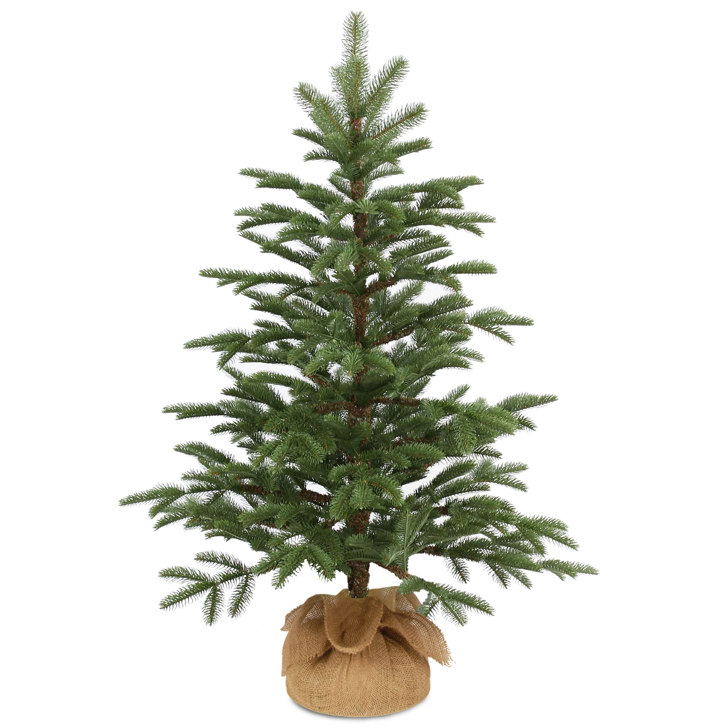 Christmas Tree Seeds.National Tree Company 3 Norwegian Small Decorative Seedling Christmas Tree In Burlap