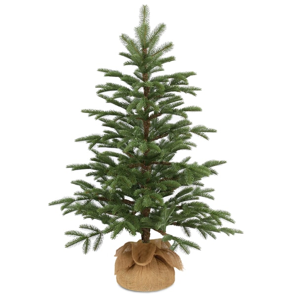 Shop National Tree Company 3' Norwegian Small Decorative Seedling Christmas Tree in Burlap - Free Shipping Today - Overstock - 12831201