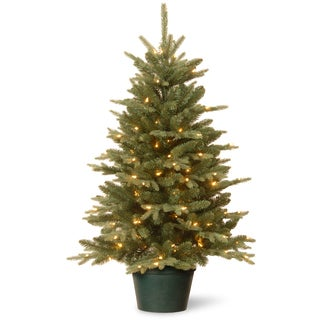 Everyday Collection 3-foot Evergreen Tree with Clear Lights