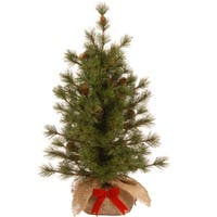 National Tree Company 3' Bristle Cone Pine Decorative Christmas Tree in Burlap Base