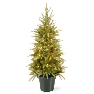 4-foot Weeping Spruce Tree with Clear Lights