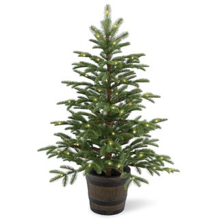 Norwegian Spruce 4-foot Entrance Tree with Clear Lights