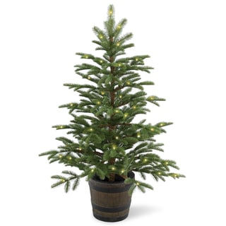 Shop Norwegian Spruce 4 Foot Entrance Tree With Clear