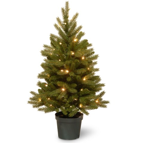 3-foot Jersey Fraser Fir Tree with Battery-operated Warm White LED Lights