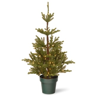 Feel Real 4-foot Imperial Spruce Tree with Clear Lights