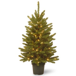 Kennsington 4-foot Artificial Tree with 100 Clear Lights