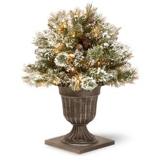 Black/Silver 24-inch Glittery Bristle Pine Porch Bush with 50 Clear Lights