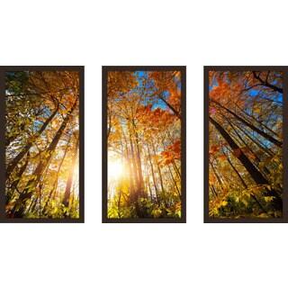 """""""Autumn Aura"""" Framed Plexiglass Wall Art Set of 3"""