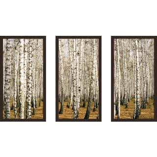 """Birch Trees 3"" Framed Plexiglass Wall Art Set of 3"