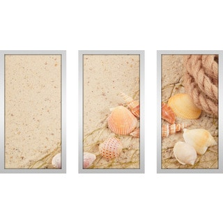 """Sandy Shells 1"" Framed Plexiglass Wall Art Set of 3"