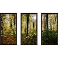 """Forest Trees"" Framed Plexiglass Wall Art Set of 3"