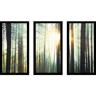 """Sunset In The Woods"" Framed Plexiglass Wall Art Set of 3"