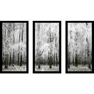 """Birching Around 4"" Framed Plexiglass Wall Art Set of 3"