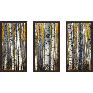 """Birch Trees"" Framed Plexiglass Wall Art Set of 3"