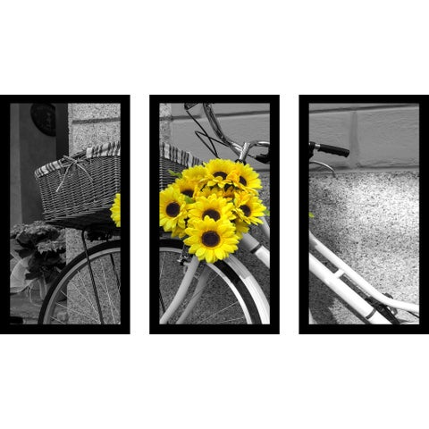 """Flowers On Bike"" Framed Plexiglass Wall Art Set of 3"