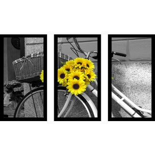 """Flowers On Bike"" Framed Plexiglass Wall Art Set of 3"