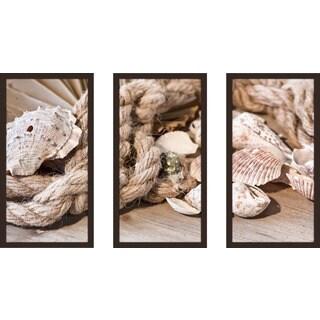 """Shells"" Framed Plexiglass Wall Art Set of 3"