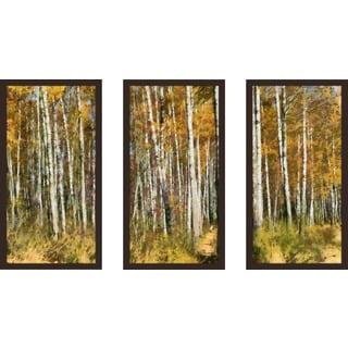"""""""Blocked"""" Framed Plexiglass Wall Art Set of 3"""