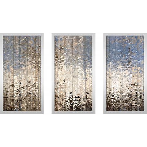"Mark Lawrence ""Ezekiel 34 12 Max"" Framed Plexiglass Wall Art Set of 3"