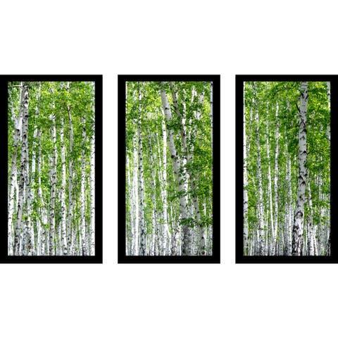 """Birch Trees Iii"" Framed Plexiglass Wall Art Set of 3"