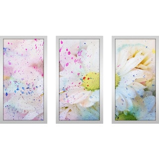 """Flower Splatter 2"" Framed Plexiglass Wall Art Set of 3"