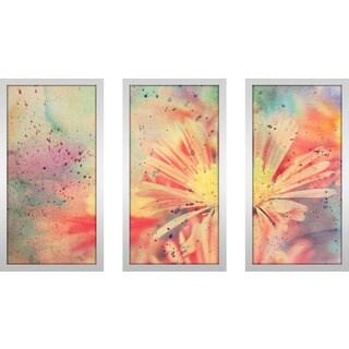 """""""Flower Splatter 1"""" Framed Plexiglass Wall Art Set of 3"""