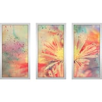 """Flower Splatter 1"" Framed Plexiglass Wall Art Set of 3"