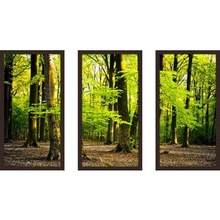 """""""Bright Summer Forest I"""" Framed Plexiglass Wall Art Set of 3"""