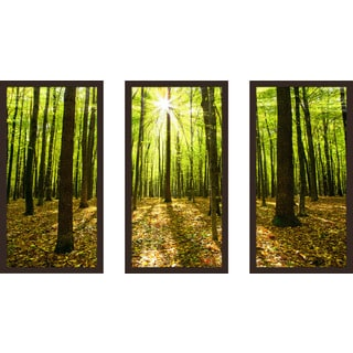 """Blinded By The Light"" Framed Plexiglass Wall Art Set of 3"